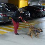 Micky et Moka se détendent un peu avant de rejoindre la Gare de Lyon en voiture