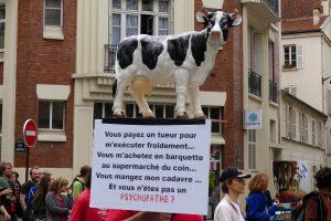 """""""Ni dans les frigos, ni sous les couteaux ! Justice pour les animaux !"""""""