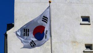 Stop à la viande de chien et de chat en Corée du Sud (août 2016)