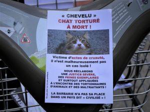 Justice pour Chevelu (17 juin 2017)