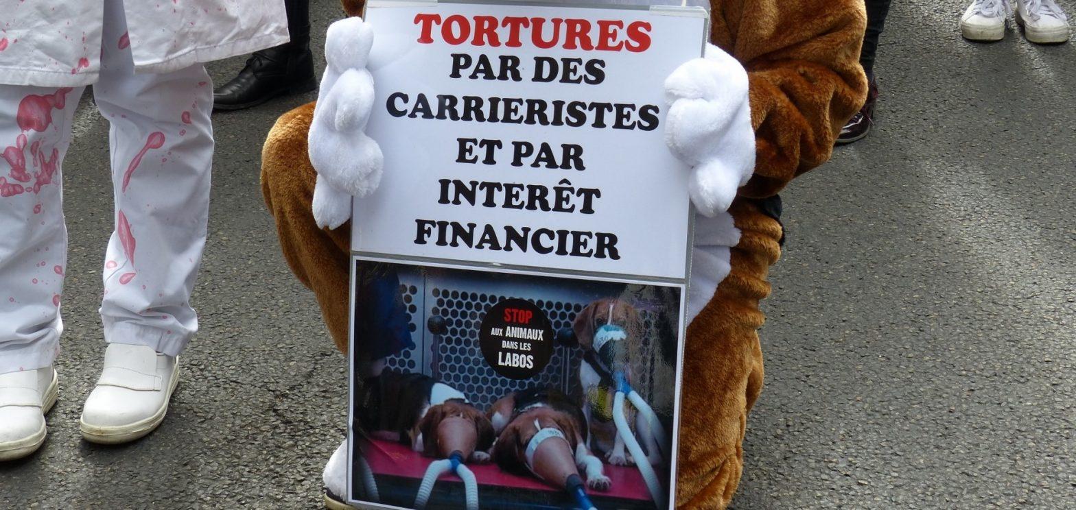 Manifestation unitaire contre la vivisection_septembre 2015